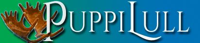 puppilull-banner.jpg